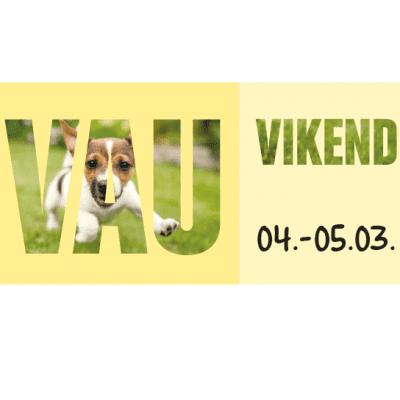 2017-02-23-Vau-vikend-Novosti