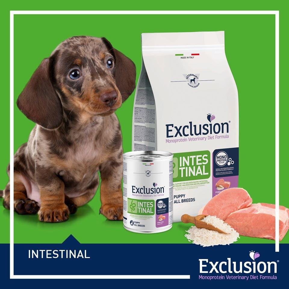 Exclusion veterinarske dijete
